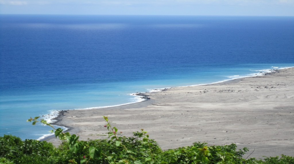 turtle conservation in Montserrat Caribbean East Coast